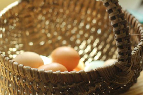 prairie homestead refrigerating-eggs-basket